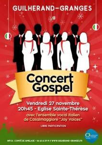 affiche concert du 27/11/2015